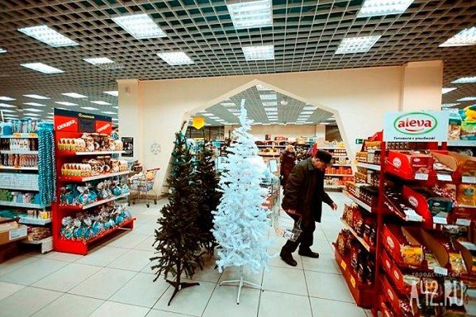 интернет магазин витебск для детей санки