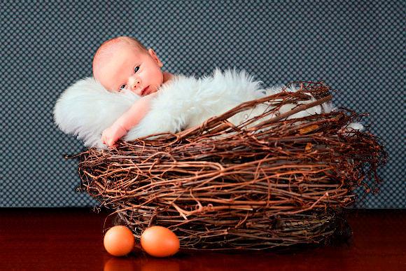 Фото №7: Фотосессия новорожденных на Пасху