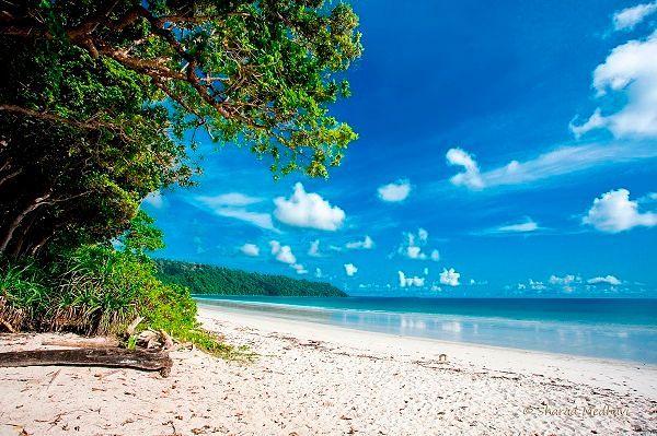 Фото №6: Модные пляжи Гоа уступают пляжам Андаманских и Никобарских островов