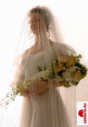 Платья для полных платье с воротником